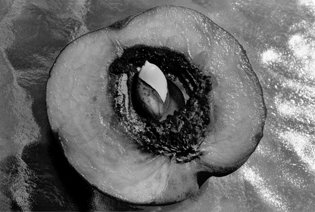Inner Peach by Guy Mendes