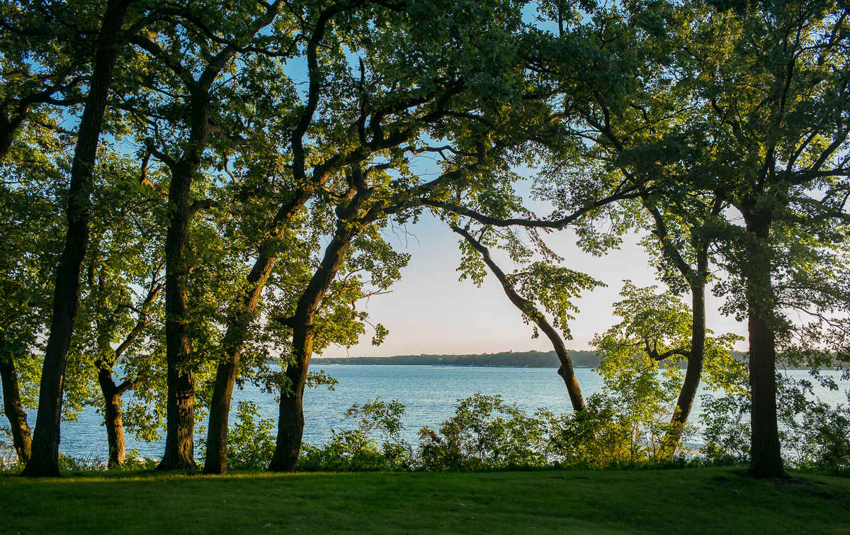 Okoboji Oaks by Guy Mendes