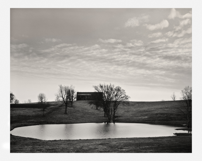Pond on Delaney Ferry Road by Guy Mendes