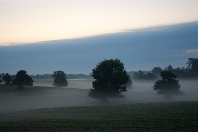 Six fifteen, a.m., Scott County, KY by Guy Mendes